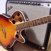 La guitare électro-acoustique